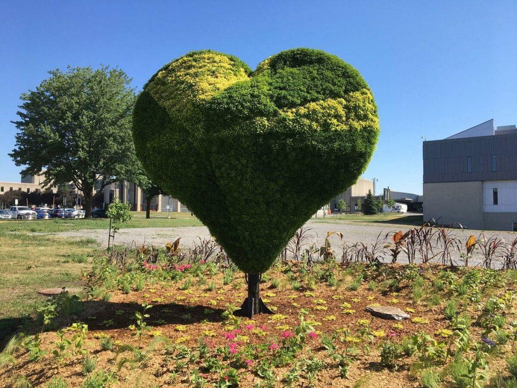 Mosaiculture coeur ville Laval